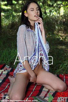 Ancha