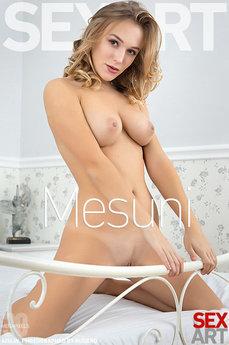 Mesuni